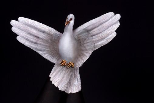 Dove-2-hands-white-on-black1-507x340