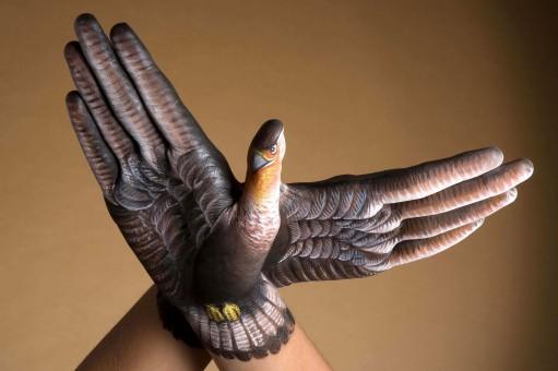 Falcon-2-hands1-511x340