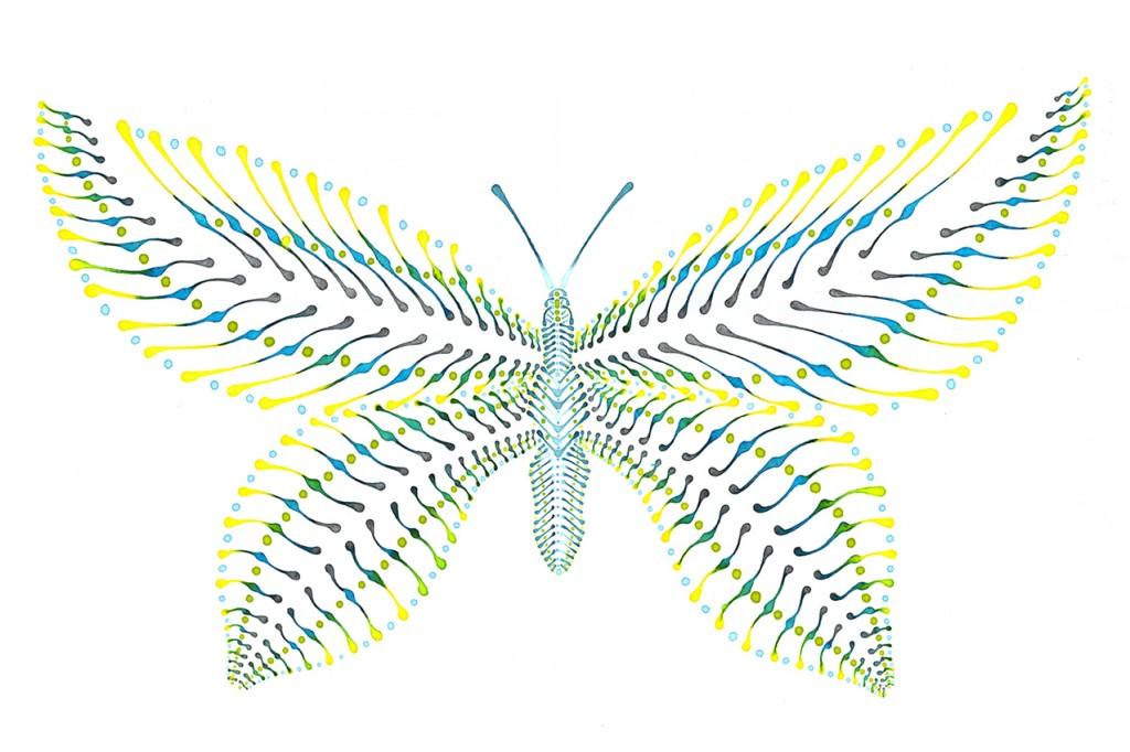 butterfly1-1024x682