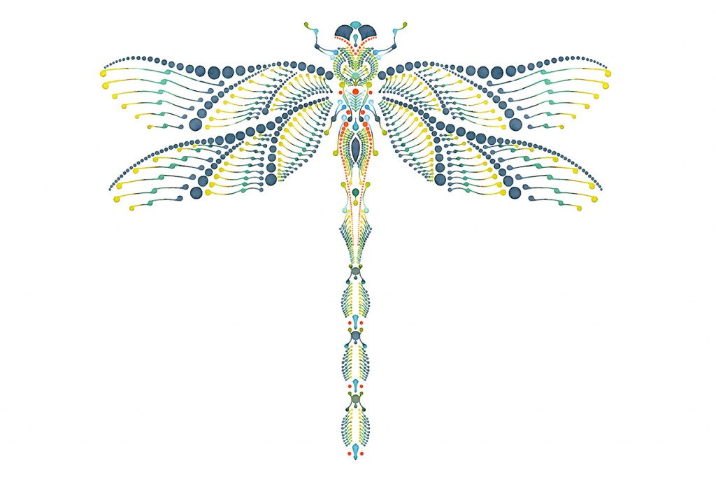 dragonfly_dotting_ornament_illustration_final_g_72-1024x682
