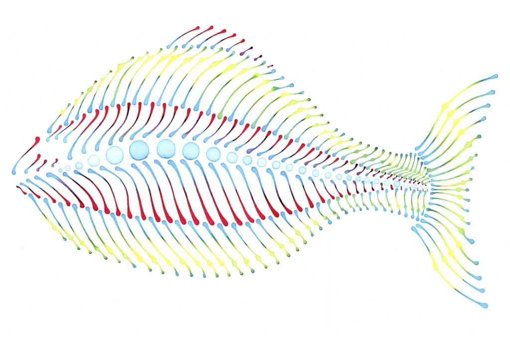 fish_V1_1-1024x682